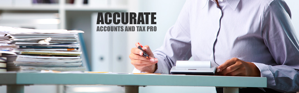 AccurateAccountsandTaxPro PretoriaNewEastLynnwood AccountingServices