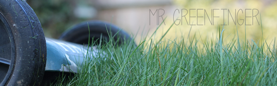 mr greenfinger lawnmower repairs fourways sandton rivonia
